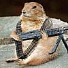 groundhog аватар